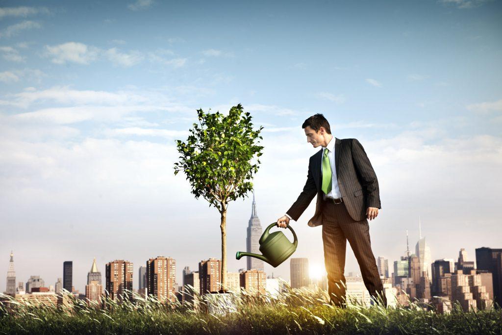Entreneurial Tree