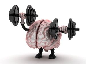 bigstock-brain-30163616