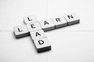 Learn-Lead 2b